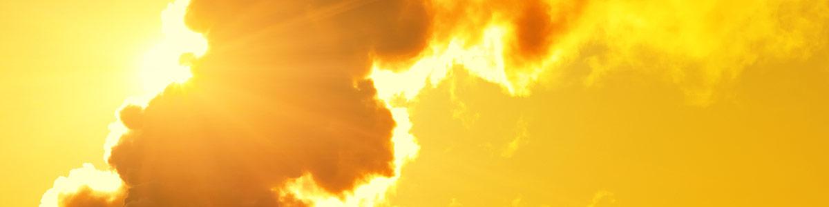 Pollution & Sun Damage