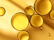 Oliven-, Avocado- und Sonnenblumenöl sowie Rosmarinextrakt