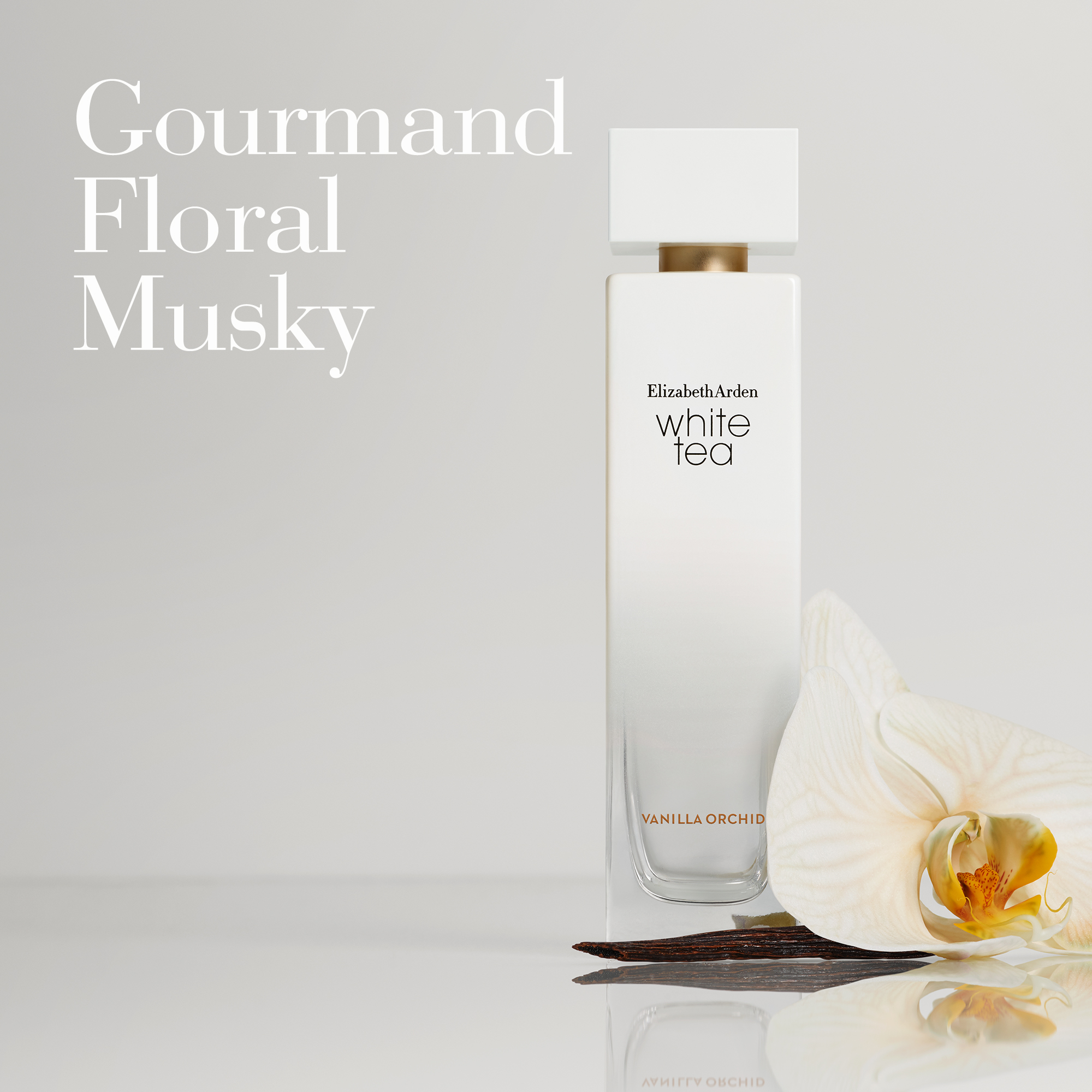 Olfactory: Gourmand, Floral and Musky